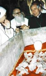 6 I resti mortali del corpo di San Luca trovati nel feretro durante la ricognizione scientifica del 1988.